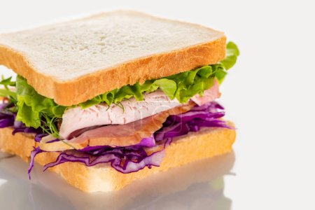 fresh sandwich with red cabbage, lettuce and meat on white surface