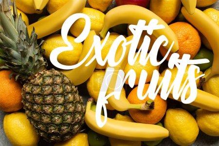 Photo pour Vue de dessus de délicieux fruits d'été colorés et illustration de fruits exotiques - image libre de droit