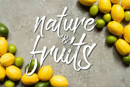 Photo for Top view of colorful avocado, limes and lemons on grey concrete surface, nature and fruits illustration - Royalty Free Image