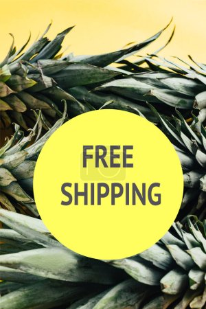 Photo for Green pineapple leaves isolated on yellow background with free shipping illustration - Royalty Free Image