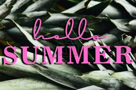 Photo for Close up view of green pineapple leaves with hello summer illustration - Royalty Free Image