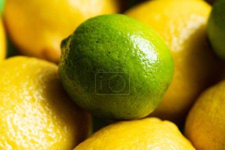 Photo pour Vue rapprochée des citrons frais mûrs et du citron vert - image libre de droit