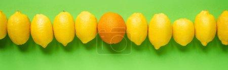 Draufsicht auf reife gelbe Zitronen und Orange in einer Linie auf grünem Hintergrund, panoramische Ernte