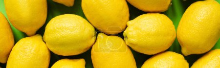 top view of ripe yellow lemons on green background, panoramic crop