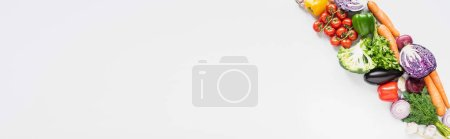 Photo for Top view of fresh ripe colorful vegetables on white background, panoramic shot - Royalty Free Image