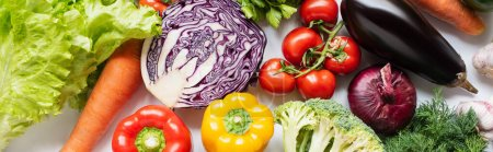 top view of assorted fresh vegetables on white background