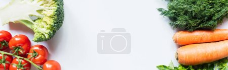 Photo for Borders of colorful dill, carrots, broccoli and tomatoes on white background, panoramic shot - Royalty Free Image