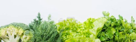 Photo for Border of fresh green parsley, dill, broccoli and lettuce isolated on white, panoramic shot - Royalty Free Image