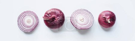 Photo for Top view of cut and whole red onion on white background, panoramic shot - Royalty Free Image