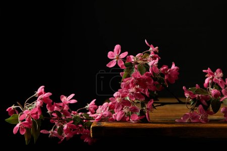 close-up shot of pink cherry blossom lying on wooden tabletop