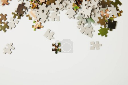 top view of jigsaw puzzle pieces on grey