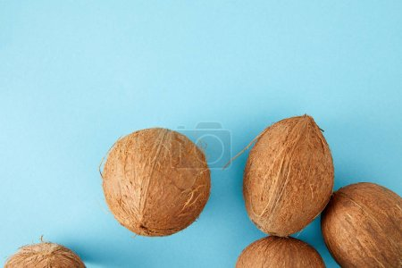 top view of arranged coconuts isolated on blue