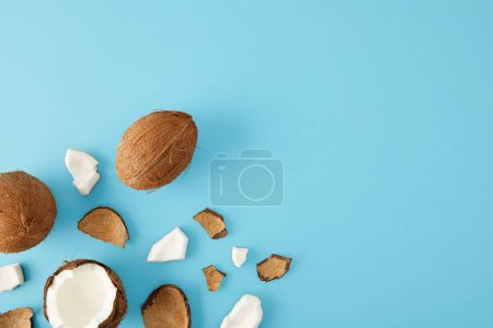 Photo for Top view of arranged coconut pieces isolated on blue - Royalty Free Image