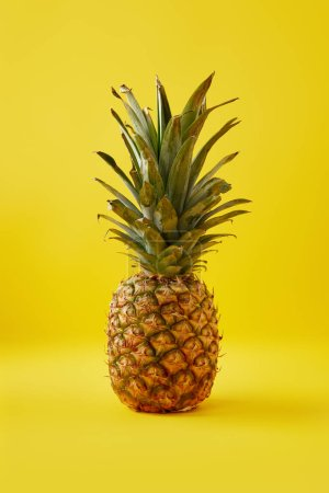 Photo for Close up view of fresh pineapple on yellow background - Royalty Free Image