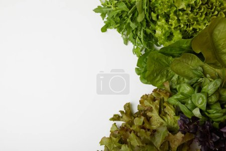 top view of fresh various leaf vegetables on white surface