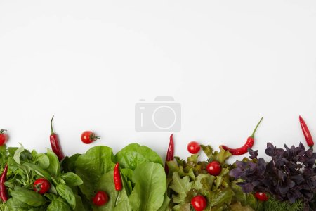 top view of fresh various leaf vegetables with tomatoes and peppers on white surface