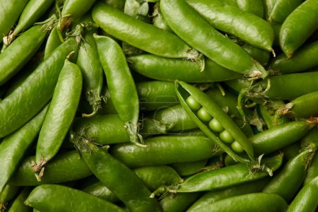 Photo for Full frame shot of ripe pea pods for background - Royalty Free Image