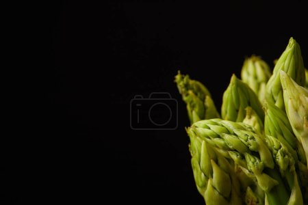 Photo for Close-up shot of fresh asparagus bunch isolated on black - Royalty Free Image