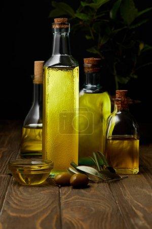Photo pour Bouteilles de divers huile d'olive sur la surface en bois - image libre de droit
