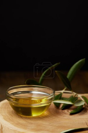 olive oil in bowl with branch on wooden board