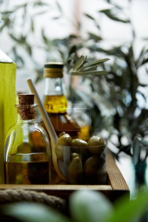 close up image of glass with spoon and green olives, bottles of aromatic olive oil with and branches on wooden tray