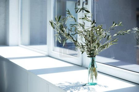 bottle with olive branches on window sill with shadow