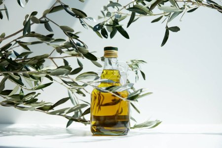 Photo for Bottle of aromatic olive oil and branches on white table - Royalty Free Image