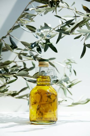 bottle of aromatic olive oil and branches on white table
