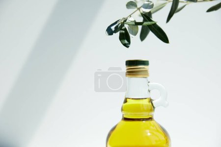 bottle of aromatic olive oil and branch on white background