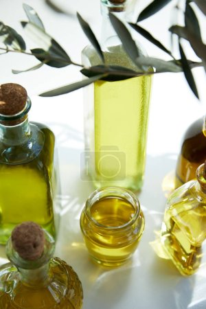 close up view of various bottles of aromatic olive oil, branch and jar on white table