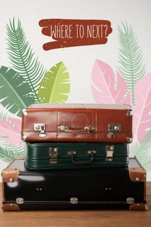 Photo for Stacked old leather travel bags with palm leaves illustration - Royalty Free Image