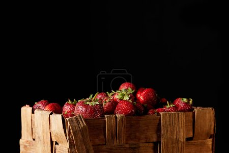 ripe red strawberries in rustic box isolated on black