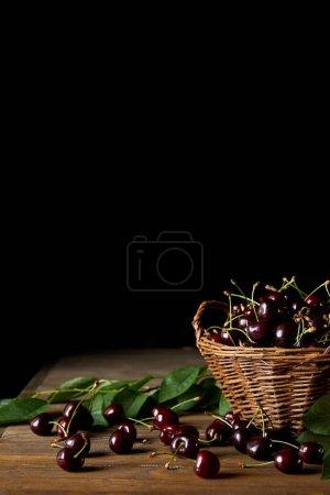 Photo pour Cerises rouges fraîchement récoltées dans un vieux panier avec des feuilles sur une table en bois et sur du noir - image libre de droit