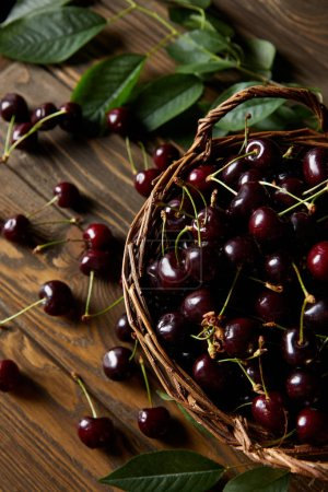 high angle view of fresh ripe cherries in old basket on wooden table