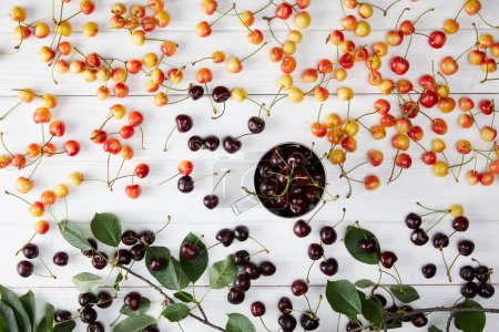 top view of red and rainier sweet cherries in cup and spilled on white wooden surface with leaves