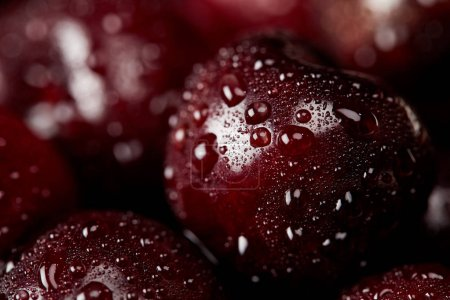 close-up shot of red sweet cherries covered with water droplets