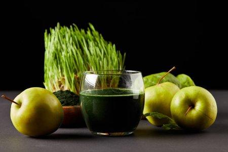 fresh smoothie from spirulina, apples, leaves, spirulina powder and spirulina grass on black background