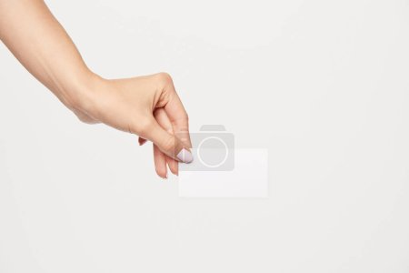Photo for Cropped image of businesswoman showing empty business card isolated on white background - Royalty Free Image