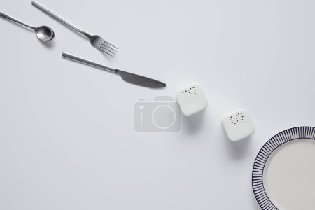 top view of arranged knife, fork, spoon, pepper caster, saltcellar and plate on white table