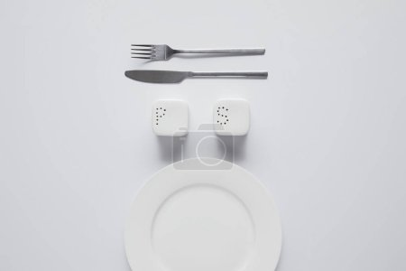 Photo for Top view of arranged plate, fork, knife, saltcellar and pepper caster on white table, minimalistic concept - Royalty Free Image