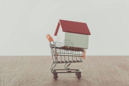 Photo pour Petite maison en bois sur votre panier, sauver le concept - image libre de droit
