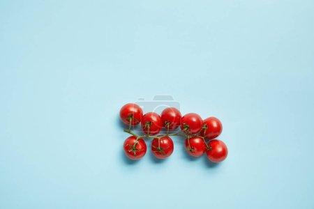 Foto de Vista superior de los tomates frescos de cereza aislado en azul - Imagen libre de derechos