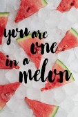 flat lay with sweet red watermelon slices lying on ice cubes, with inspection
