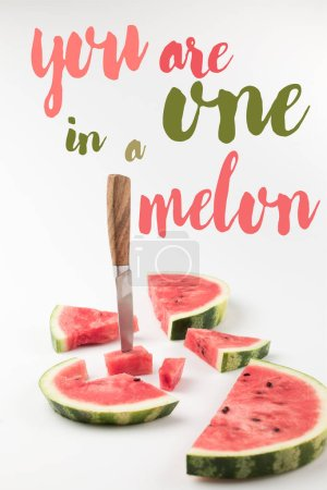 red fresh watermelon slices with knife isolated on white, with inspection