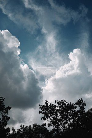 low angle view of trees against cloudy sky background