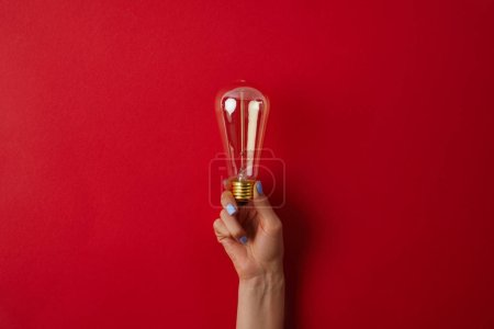 cropped shot of woman holding vintage incandescent lamp on red surface
