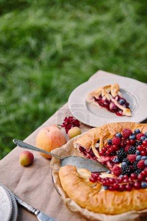 Foto de Pastel de frutos apetecibles sabrosa sobre mesa en jardín - Imagen libre de derechos