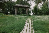 wooden path and green grass in garden