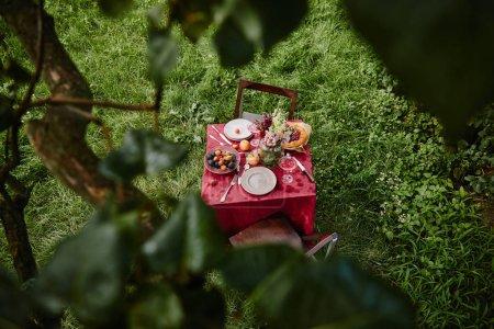 Foto de Vista de ángulo alto de tabla con alimentos y bebidas en el jardín - Imagen libre de derechos