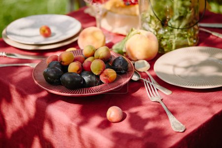 fruits, forks and plates on table in garden